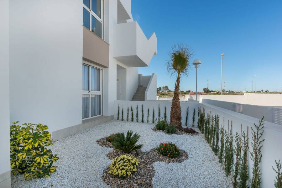 New Build - Apartment - Rojales - Doña Pepa
